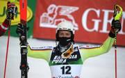 Wintersport / Slalom