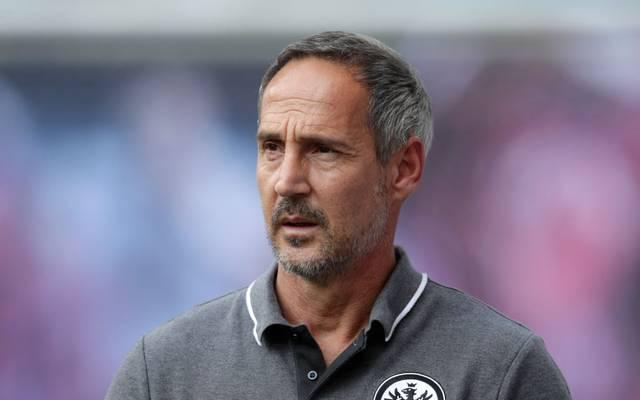 Adi Hütter ist von der wachsenden Sympathie mit seiner Mannschaft nicht überrascht