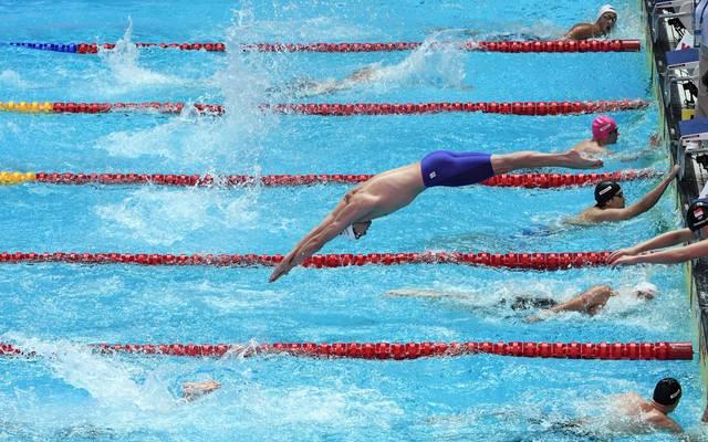 Dsv schwimmen kalender