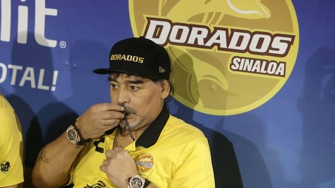 Diego Maradona ist zurück als Trainer bei Dorados de Sinaloa