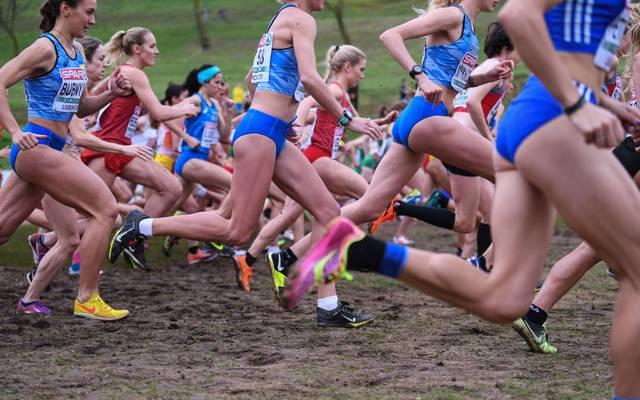 Der Crosslauf könnte in absehbarer Zeit wieder olympisch sein