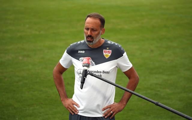 Pellegrino Matarazzo muss etliche Ausfälle verkraften