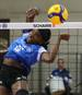 Volleyball & Champions League Frauen