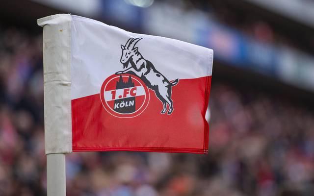 Der 1.FC Köln hat ein weiteres Zeichen für Toleranz gesetzt
