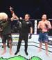 Kampfsport / UFC