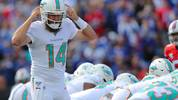 ORCHARD PARK, NY - OCTOBER 20:  Ryan Fitzpatrick #14 of the Miami Dolphins calls a play during the first half against the Buffalo Bills at New Era Field on October 20, 2019 in Orchard Park, New York.  (Photo by Timothy T Ludwig/Getty Images)
