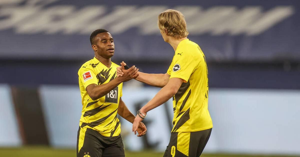 Patrick Owomoyela schwärmt von BVB-Star Erling Haaland und bewertet Moukoko - SPORT1