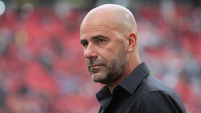 Peter Bosz soll längerfristig bei Bayer Leverkusen bleiben
