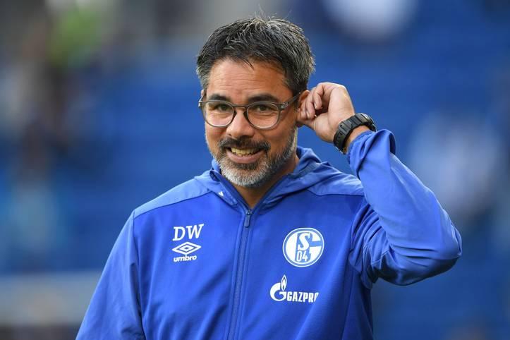 Das Derby zwischen dem FC Schalke 04 und Borussia Dortmund steht am Samstag an. Erstmals auf der Bank sitzt Schalke-Trainer David Wagner. Der neue Trainer kennt Schalke bereits als Spieler ...
