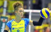 Volleyball / Frauen Bundesliga