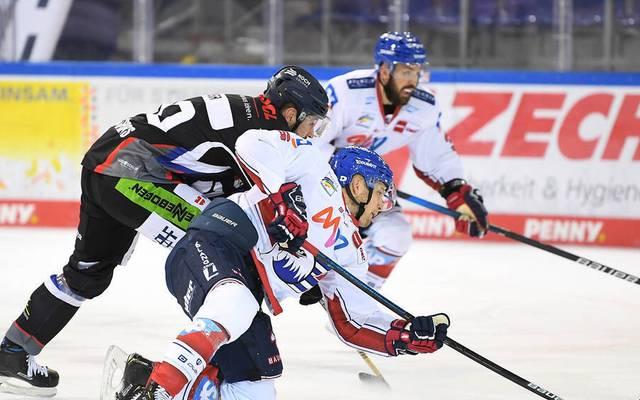 Bei den Straubing Tigers ging DEL-Meister Adler Mannheim als Verlierer vom Eis