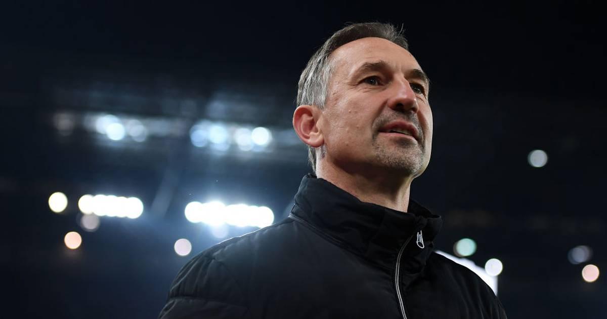 1. FC Köln und Achim Beierlorzer einigen sich auf Vertragauflösung - SPORT1