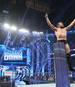 Kampfsport / WWE