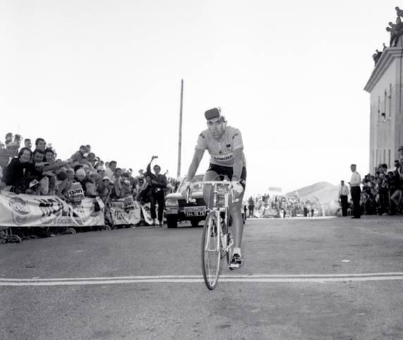 Die Tour 2019 startete 50 Jahre nachdem die Triumph des legendären Eddie Merckx in bBrüssel. Der Belgier hat im Radsport alles gewonnen, was es zu gewinnen gab. Sein Hunger nach Siegen war grenzenlos, wofür er sich auch einen ganz besonderen Spitznamen verdiente. SPORT1 stellt den erfolgreichsten Radprofi aller Zeiten vor