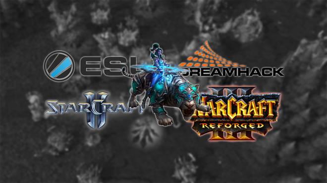 Neue StarCraft & Warcraft Turniere