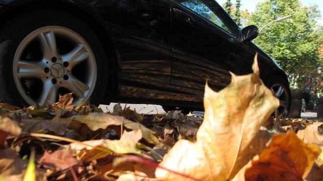 Laub, Ernteabfälle und erster Frost machen die Fahrbahn im Herbst für Autos und Motorräder zuweilen unberechenbar