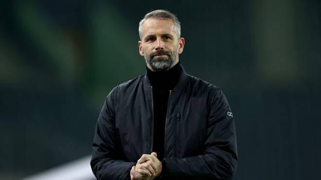 Marco Rose könnte Borussia Mönchengladbach nach zwei Jahren in Richtung BVB verlassen