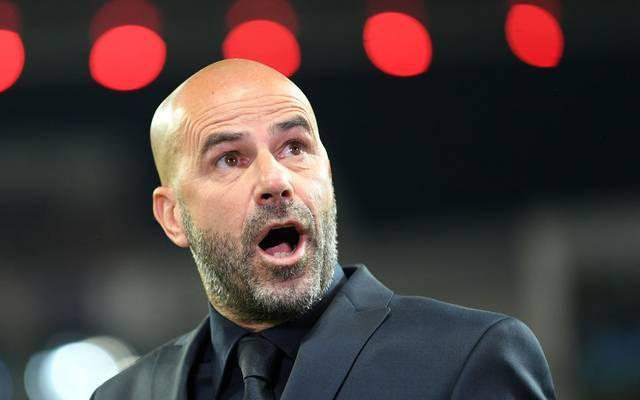 Leverkusen-Coach Peter Bosz nimmt seine Spieler in die Pflicht