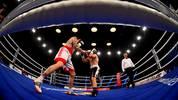 Die größten Boxkämpfe in Frankfurt mit Schmelling, Ali, Klitschko, Sturm, Robinson, Mildenberger, Weller