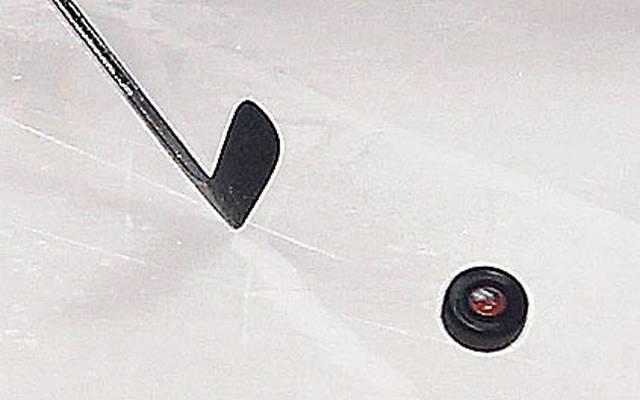 Die Nürnberg Ice Tigers angeln sich Jason Meilleur von den Kassel Huskies