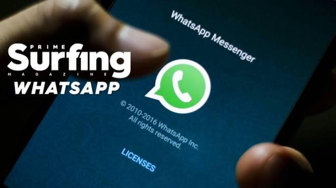 Surf-News per Whatsapp aufs Smartphone