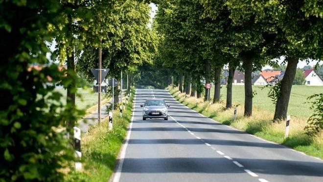 Autofahrer sollten auf Landstraßen Verhalten anpassen