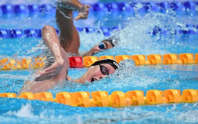 Schwimm-WM: Florian Wellbrock scheitert in Vorlauf über 800 m Freistil