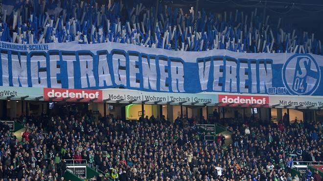 Schalke befindet sich aktuell im Abstiegskampf