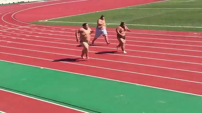 Drei Sumoringer sprinten um die Wette