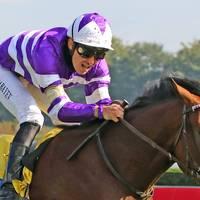 Murzabayev beherrscht Jockey-Statistik