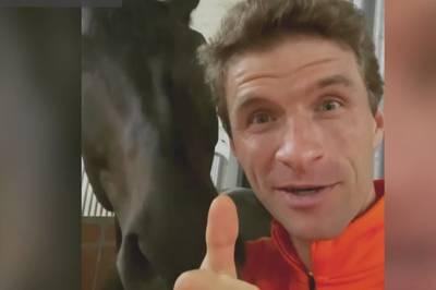 Kuriose Glückwünsche: Müller gratuliert Goretzka mit Pferdevideo