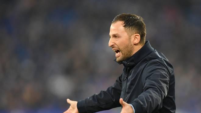 Domenico Tedesco steht aktuell mit Schalke auf Tabellenrang 14