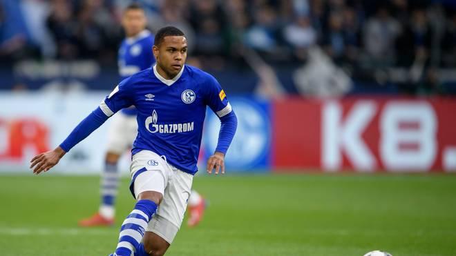Schalke 04: McKennie und Sane vor Comeback gegen Nürnberg, Weston McKennie fehlte zuletzt wegen eines Außenbandriss im Sprunggelenk