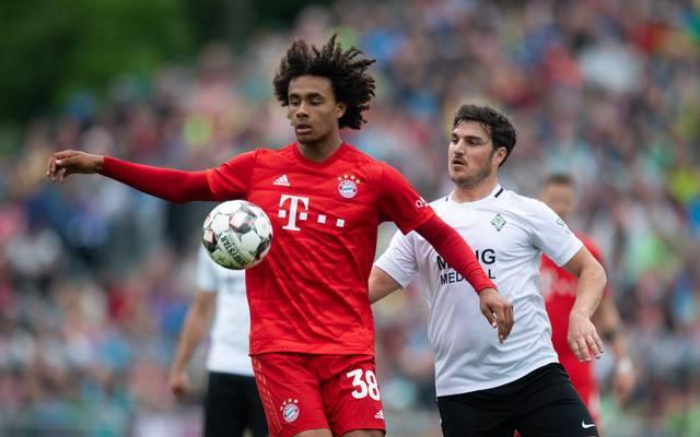 Joshua Zirkzee, ADO Den Haag, FC Bayern München