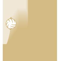 DVV-Pokal Männer
