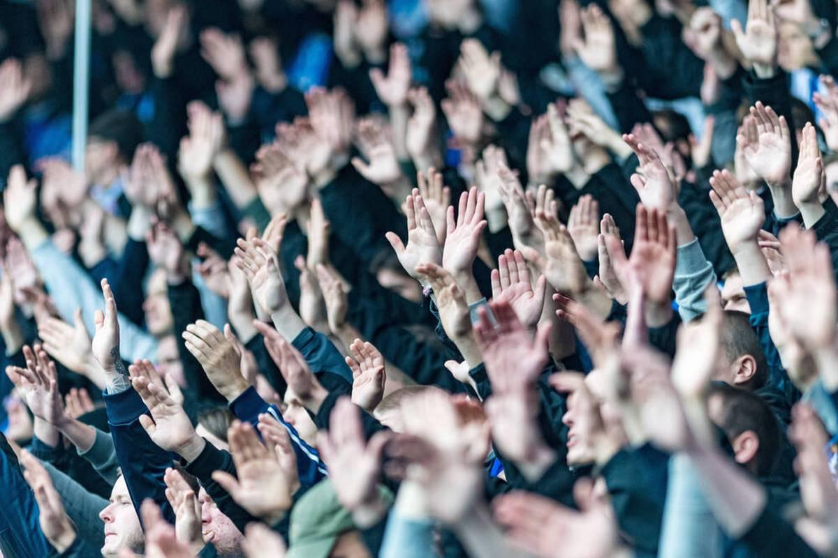 Einige Fans von Hansa Rostock werden mit der nächsten geschmacklosen Aktion auffällig. In Hamburg werden mehrere Schweinekämpfe aufgefunden.