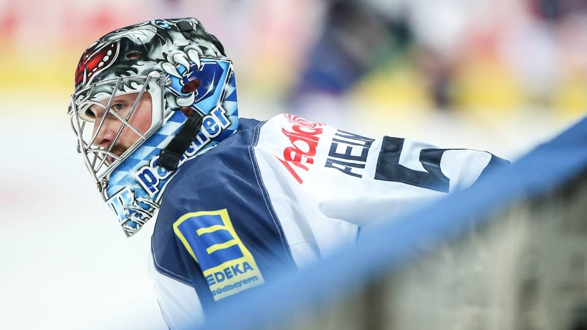 Timo Pielmeier-ERC Ingolstadt