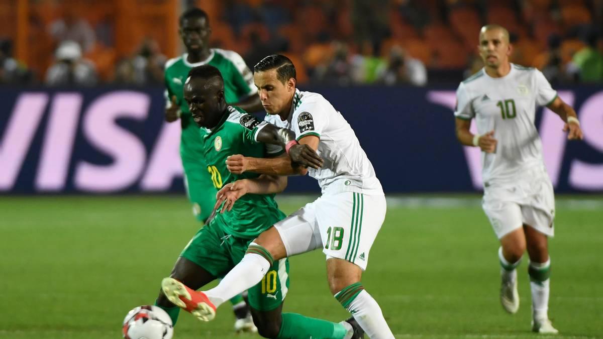 Algerien hat den Afrika Cup 2019 gewonnen
