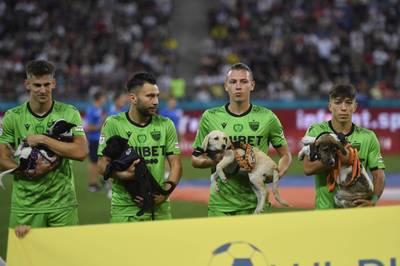 In Rumänien laufen die Teams in dieser Saison mit Hunden ins Stadion ein - um möglichst vielen von ihnen ein besseres Leben zu ermöglichen.
