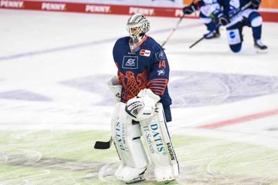 Die Adler Mannheim haben kurz nach dem Saisonstart in der Deutschen Eishockey Liga den nächsten längerfristigen Ausfall zu verkraften.