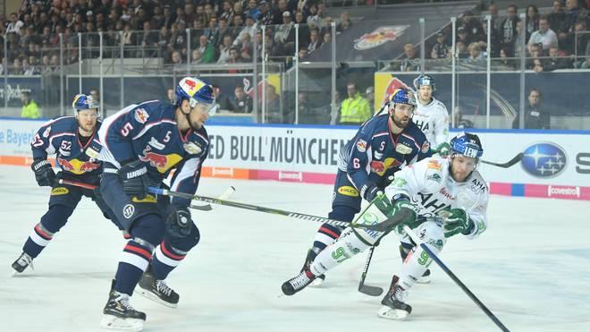 DEL-Finale: Adler Mannheim - EHC Red Bull München