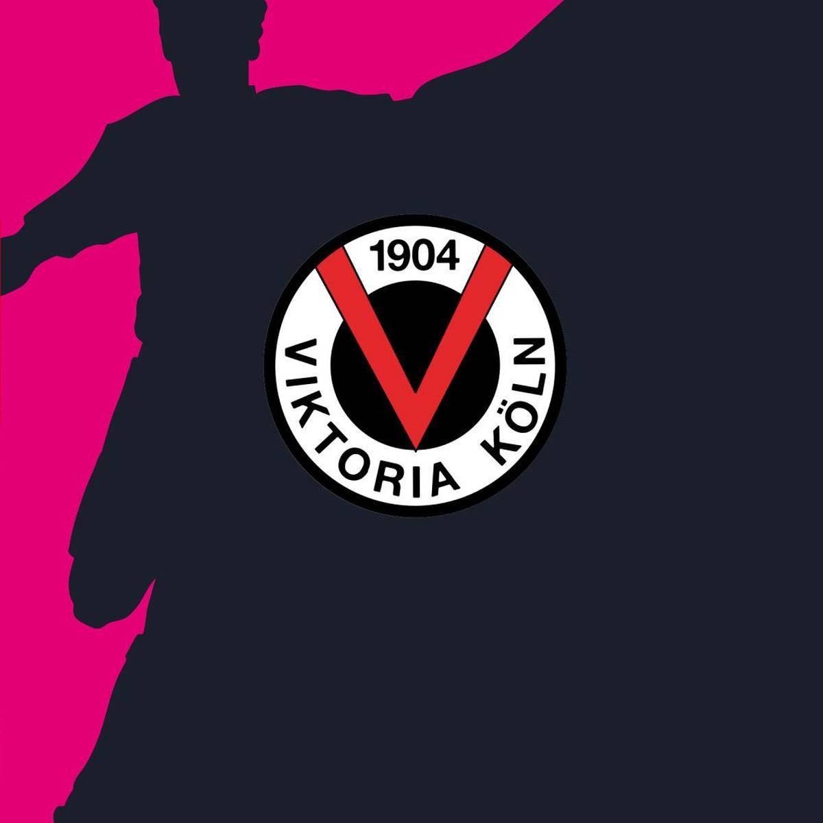 TSV Havelse - FC Viktoria Köln (Highlights)