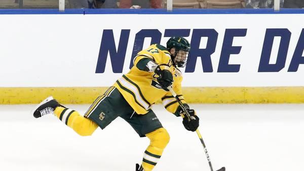 Nico Sturm darf wieder in der NHL auflaufen