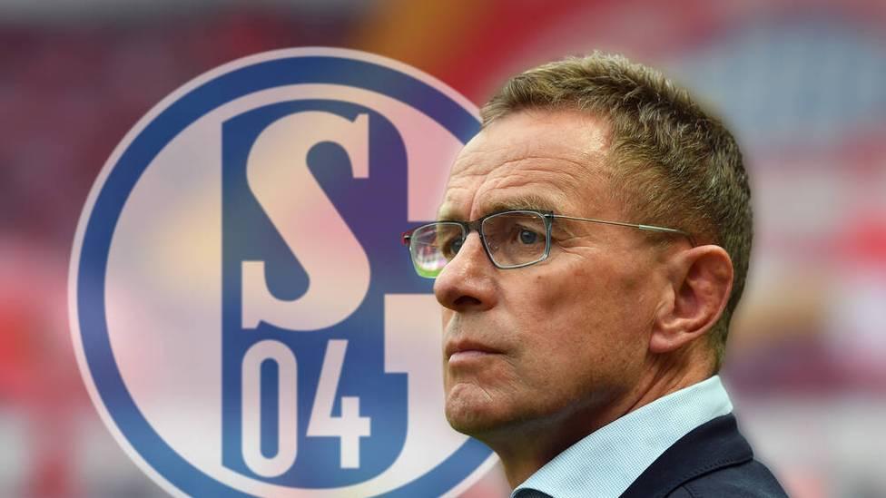 Ralf Rangnick wird beim FC Schalke keine Rolle übernehmen. Der ehemalige Bundesliga-Trainer sagt dem Krisenklub offiziell ab.
