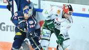 Spiel 7 zwischen München und Augsburg: Wer folgt Mannheim ins Finale?