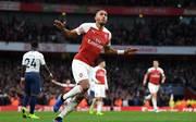 Pierre-Emerick Aubameyang feierte ein Tor direkt vor der Kurve der Spurs-Fans