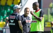 Trainer Peter Stöger verrät Details zu Anthony Modestes Abgang