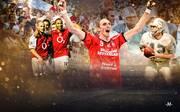 FC Arsenal, Miami Dolphins und Flensburg: Diese Teams spielten die perfekte Saison