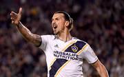 Zlatan Ibrahimovic könnte im Winter nach Europa zurückkehren