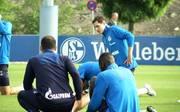 """Schalke 04 Nezugang  - Sebastian Rudy: """"FC Schalke 04 ist ein geiler Verein!"""""""